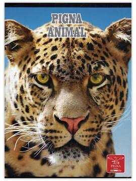 pc2_a5-mate-80-file_animal-tiger680
