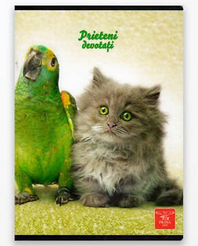 Caiet-A5-MATE-48-F-PARROT-CAT