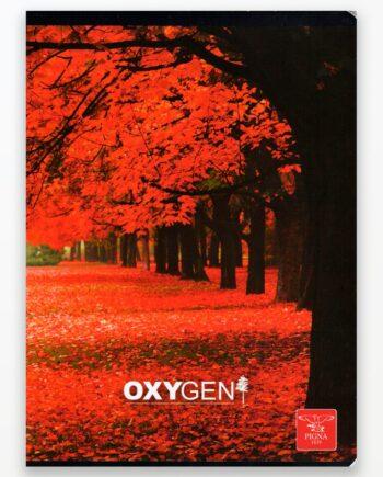 Caiet-A5-VELIN-48-F-OXYGEN1