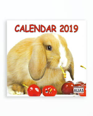 MINI CALENDAR SPIRALAT PUI DE ANIMALE 2019