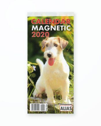 Calendar Magnetic Caini - 2020