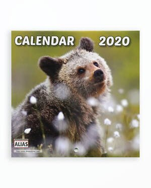 Mini Calendar Capsat Pui De Ursi - 2020