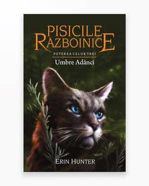 Umbre Adanci - Puterea Celor Trei. Pisicile Razboinice Vol. 17