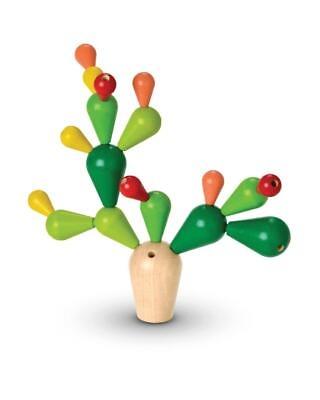 Cactus in Echilibru