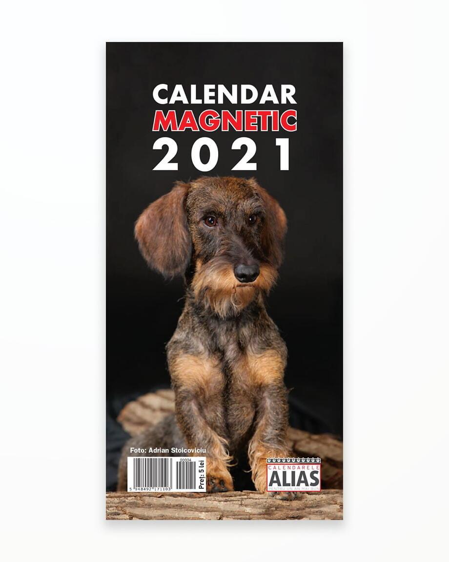 Calendar Magnetic Caini – 2021