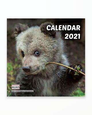 Mini-Calendar-Capsat-Pui-de-Ursi-2021.jpg