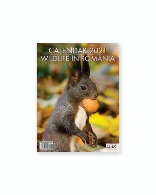 Calendar Wildlife 12+1 File - 2021